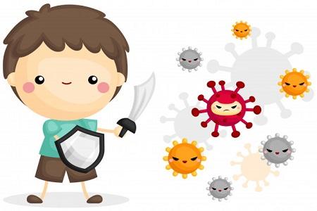 3.1, Vai trò của lợi khuẩn trong hệ tiêu hóa 1