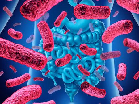 Loi-ich-bo-sung-loi-khuan-bifidobacterium lợi ích bổ sung lợi khuẩn Bifidobcterium