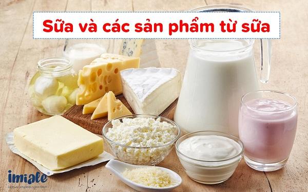 1.4. Sữa và các sản phẩm từ sữa 1