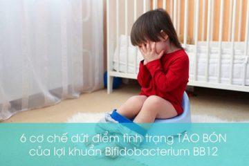 6 cơ chế dứt điểm chứng táo bón của Lợi khuẩn sống Bifidobacterium BB12