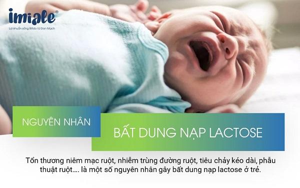 1.1. Không dung nạp lactose là gì? 1
