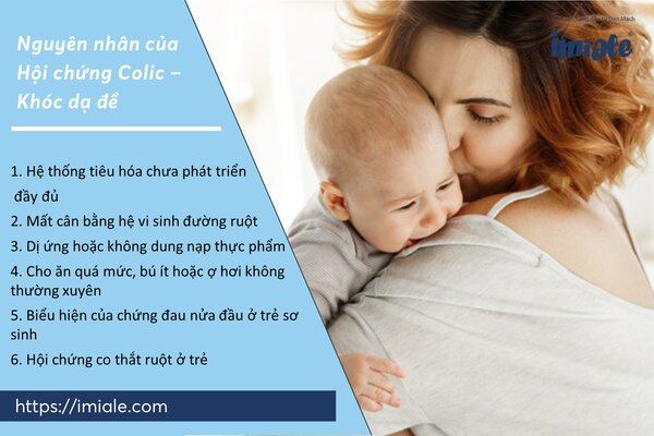 III - Nguyên nhân của em bé khóc - hội chứng khóc dạ đề 1