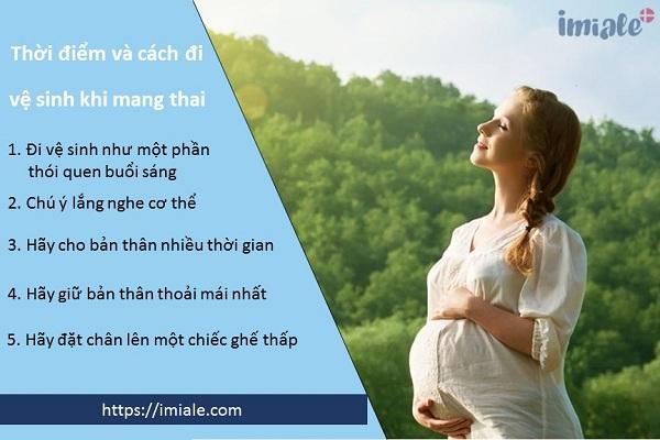 1. Chú ý thời điểm và cách đi vệ sinh khi gặp táo bón khi mang thai 1