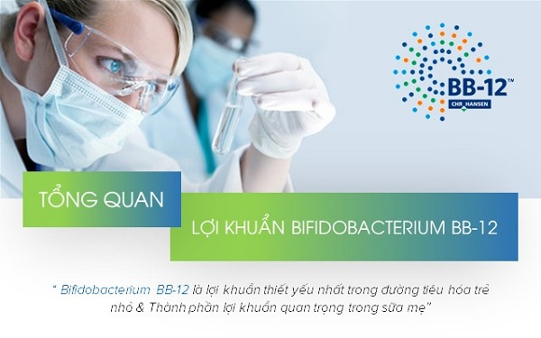 Các nghiên cứu khoa học của lợi khuẩn Bifidobacterium BB12® (Imiale®) 1