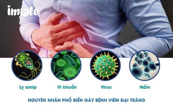 3. Nguyên nhân gây bệnh phổ biến 1