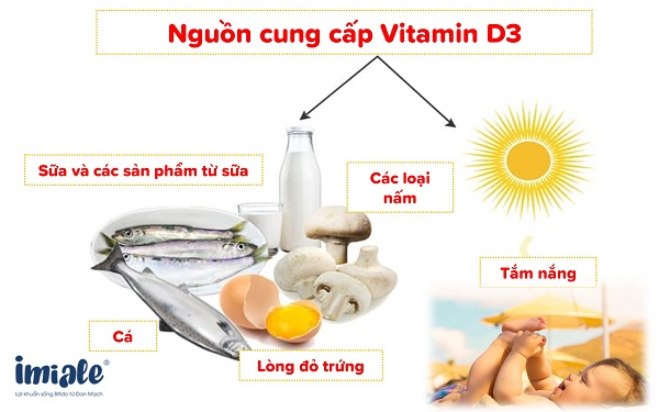 1.1. Vitamin D là một trong những vitamin thiết yếu cần cho sự phát triển của trẻ. 1