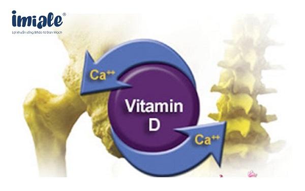 canxi và vitamin D