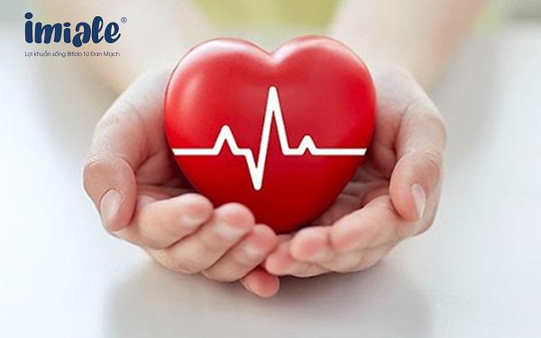 lá ổi giúp tim khoẻ mạnh
