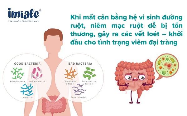 mất cân bằng vi khuẩn đường ruột