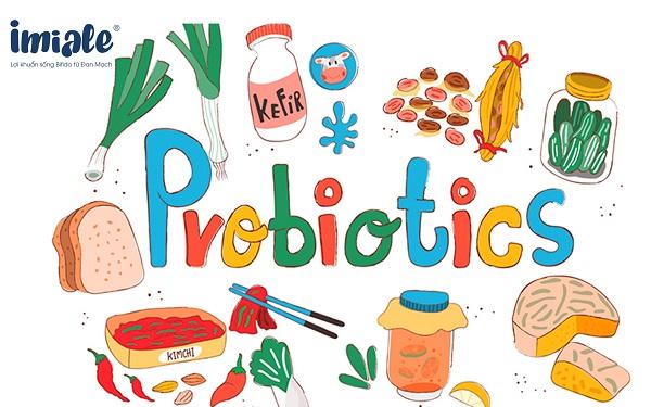 lợi khuẩn probiotics